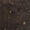 Erde | Soil